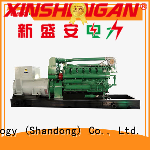 Xinshengan automatic gas generator directly sale for van