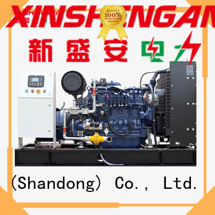 Xinshengan best price gas backup generator best supplier for van
