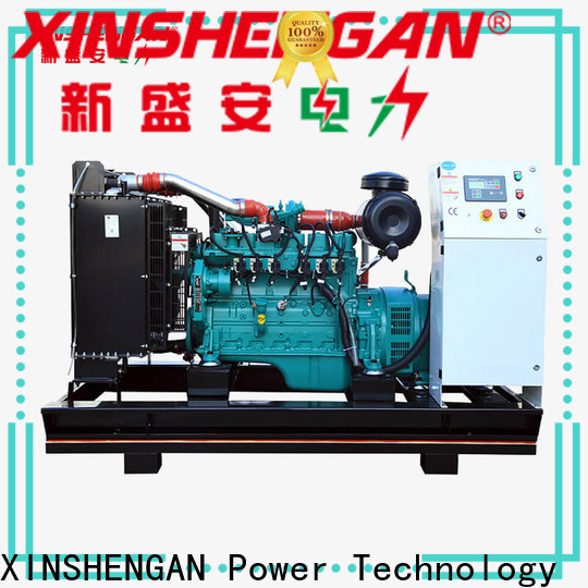 Xinshengan high quality natural gas engine series for truck