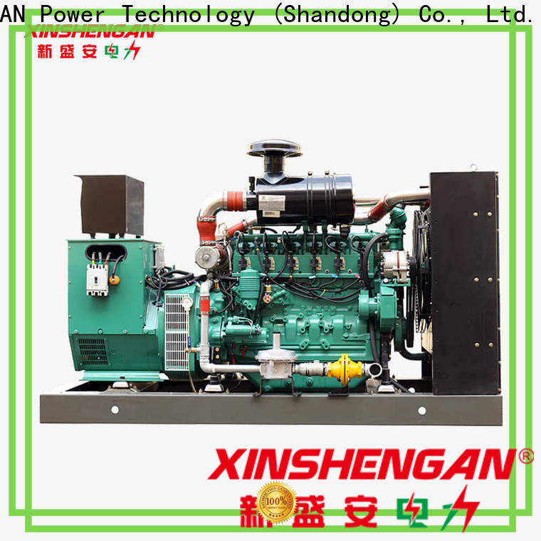 high-quality natural gas powered portable generator manufacturer on sale