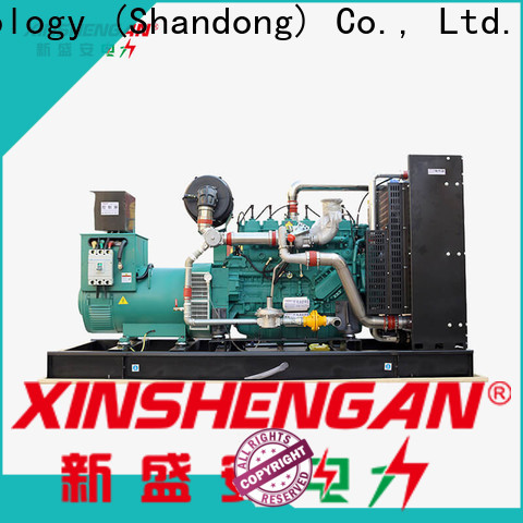 worldwide domestic gas generator factory direct supply for power