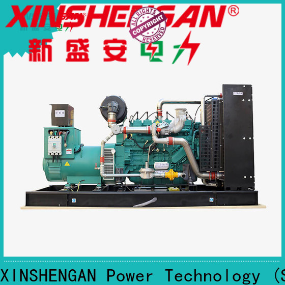 professional gas powered backup generator manufacturer for lorry