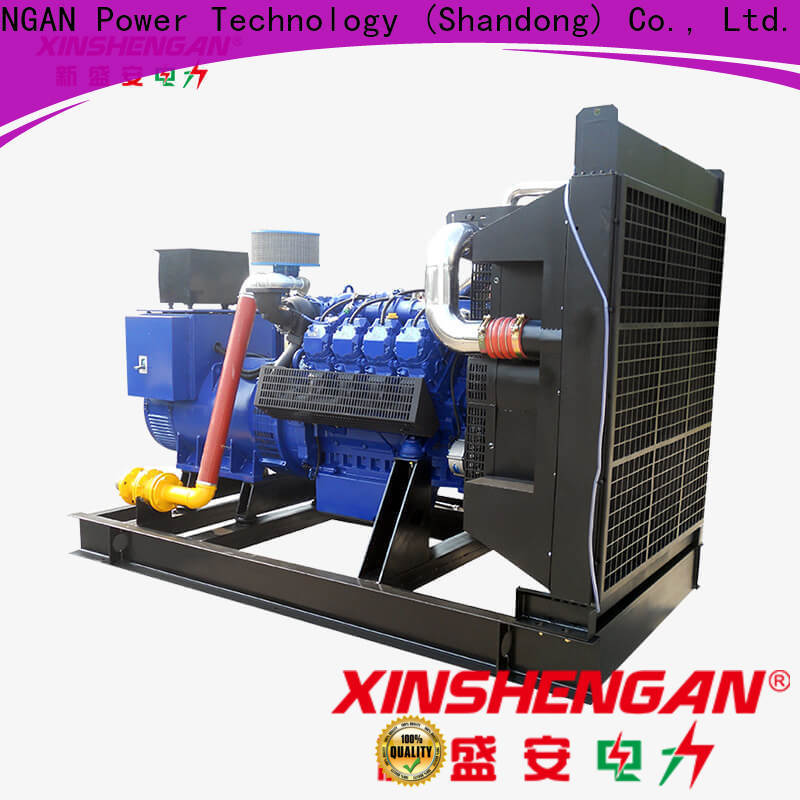 Xinshengan quality nature generator series for generate electricity