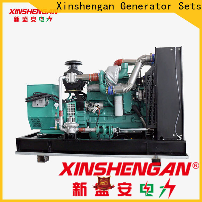 Xinshengan biomass generator series for vehicle