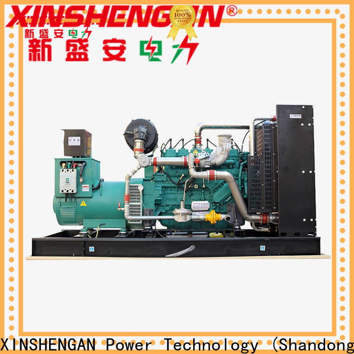 Xinshengan best value best standby generators natural gas series for machine
