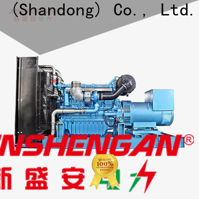Xinshengan cost-effective 250kw diesel generator from China for sale