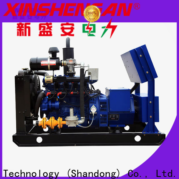 quality gas powered generator directly sale for vehicle